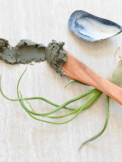 How to Make a Sea Clay and Aloe Vera Facial Mud - Great for Cleansing and Exfoliation